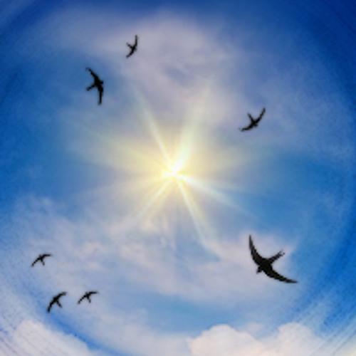 Brighter DEMO - Open Sky Creative