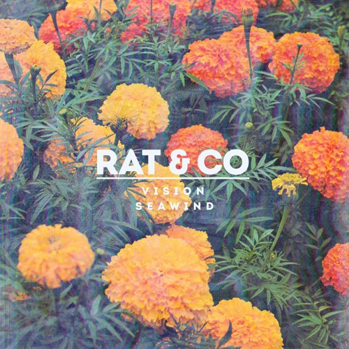 Rat & Co - Forget Never Forget