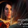 Thattathin Marayathu - Fathima BGM