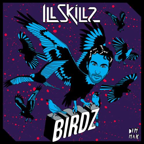 IllSkillz - Birdz (Teaser)