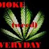 Smoke weed every day - snoop dog remix (Dj bax)dubtep mp3