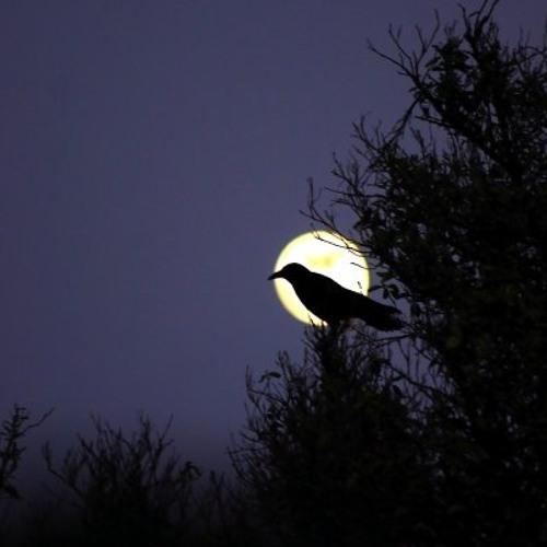 A Clear Midnight