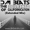 DM Beats - The Otherside Of Californication (Extended Mix)