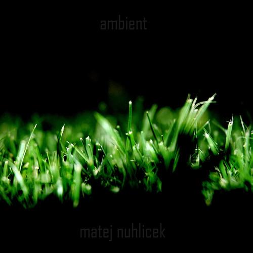 Ambient Matrix