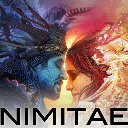 NIMITAE - Earth On Fire