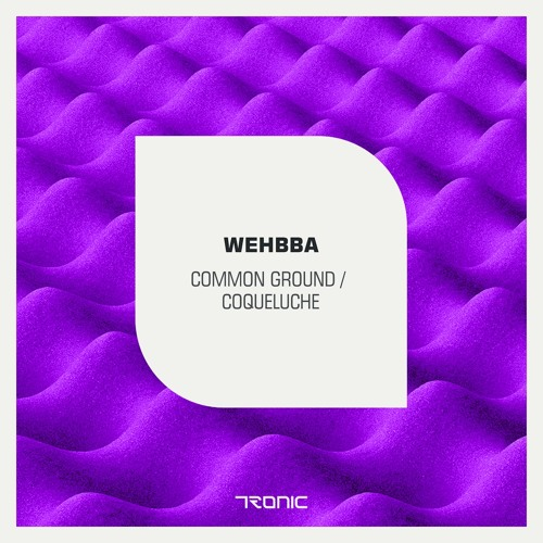 Wehbba - Common Ground - Tronic // lo-fi sc edit