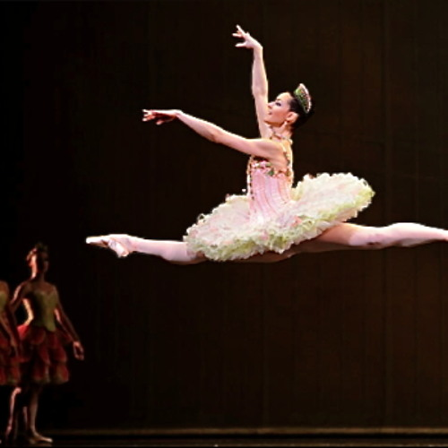 Dance of the Sugar Plum Fairy (from the Nutcracker Suite for Percussion)