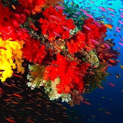 Underwater - Music for Films Vol. 4 1