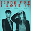 Icona Pop - I Love It feat. Charli XCX (Cobra Starship Remix)