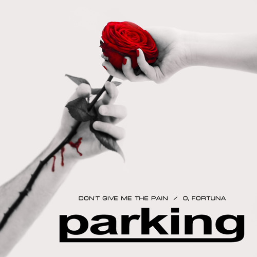 Parking - 1. Don`t Give Me The Pain