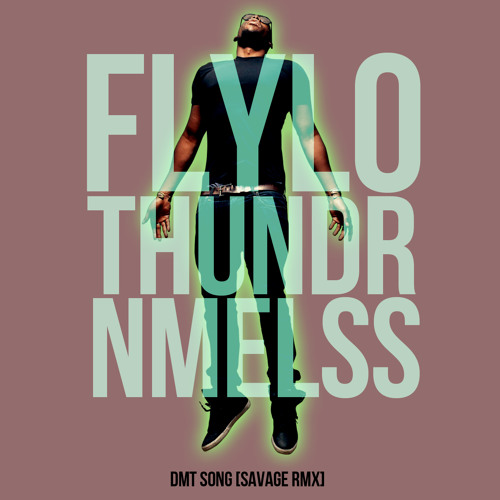Flying Lotus + Thundercat + NAMELESS = DMT Song [SavageRMX]