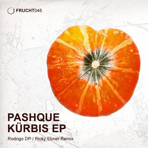 Pashque - Feel Destructed (Original Mix) FRUCHT045