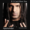 Apache Indian - If I Can't Have You [New Single 2012]