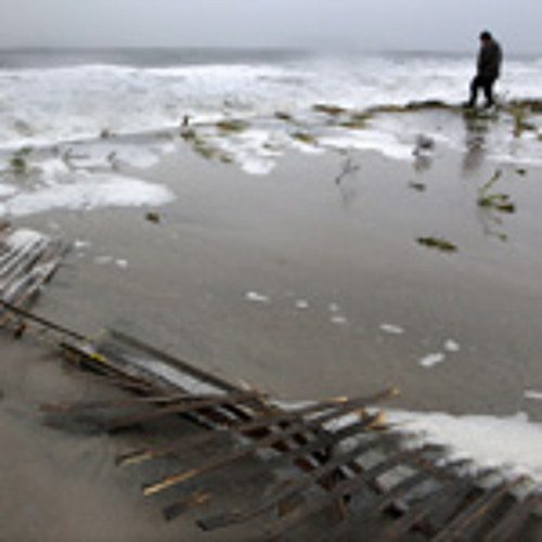 The Jersey Shore, after Sandy: To rebuild or not to rebuild