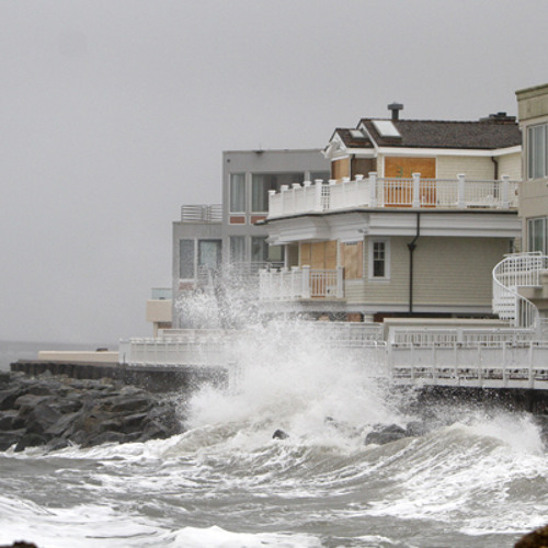 The Shore after Sandy