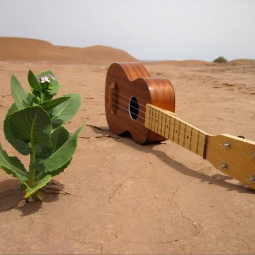 Kel assouf azawad mp3 downloads