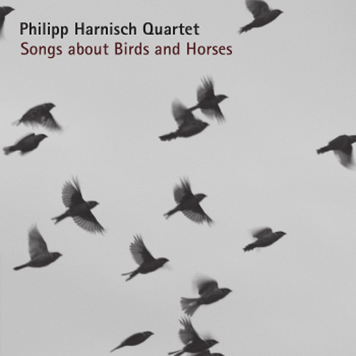 04 - Philipp Harnisch Quartet - Backyard Birds - Teaser