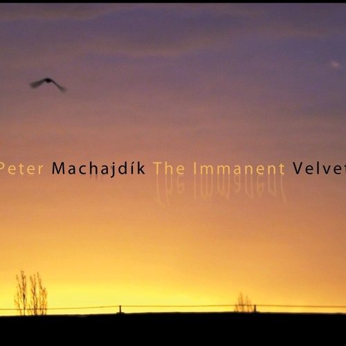 Peter Machajdík's SILENT WANDERINGS for guitar (excerpts)