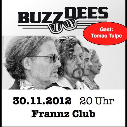 Buzz Dees in RadioEins Depesche Pop 22.11.2012