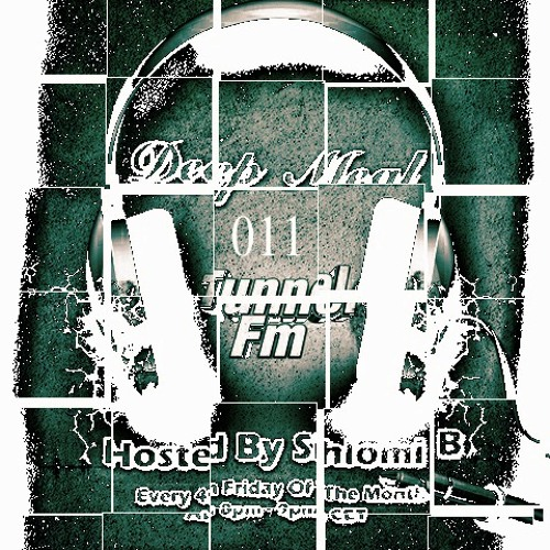 Shlomi B. 'Deep Meal' 011 Tunnel Fm November 2012