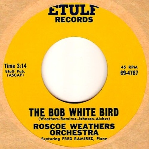 The Bob White Bird - The Roscoe Weathers Orchestra
