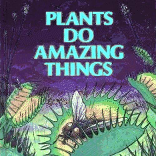 plants>humans - Ascension