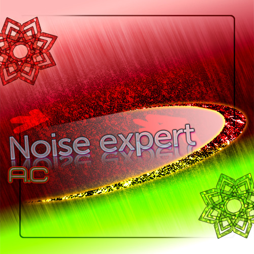 Noise expert