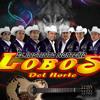 Los Lobos del Norte - Mi Querido Sabio - album 2012