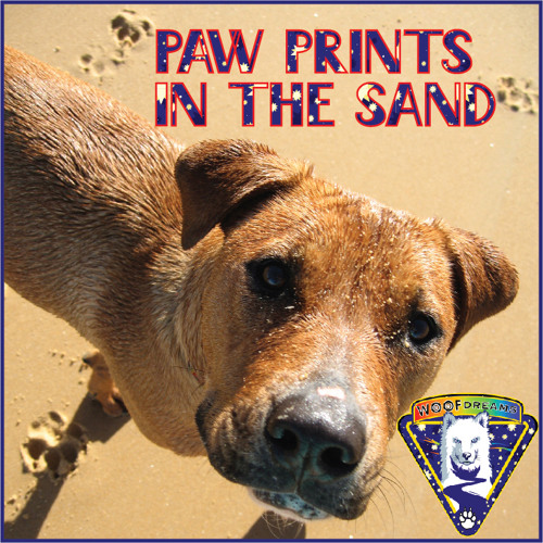 WooFDreams Paw Prints In The Sand