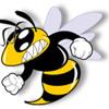 D2-Wasp-DUB(2010)