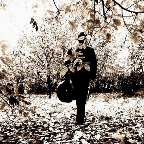 SIRVAN MOTEVASSEL, THE RAINBOW OF MY DESIRES