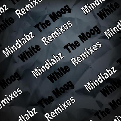 Mindlabz - The Moog (Spectral Atoms remix) [VKR145]