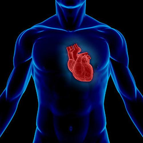 Ed-Liner - Heart