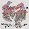 My 3 Wishes (Doctor Dru Remix) - Channel X (128kbps)
