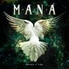 80 MANA - AMOR CLANDESTINO (LEACHO)