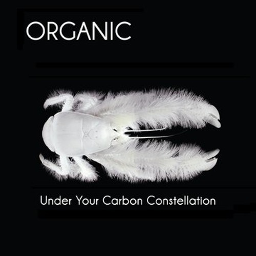 CD REVIEW - UNDER YOUR CARBON CONSTELLATION