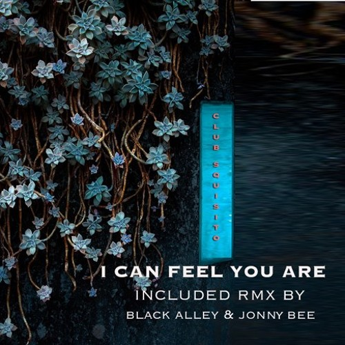 Club Squisito - I Can Feel You Are (Black Alley back to '89 Remix) low rez preview
