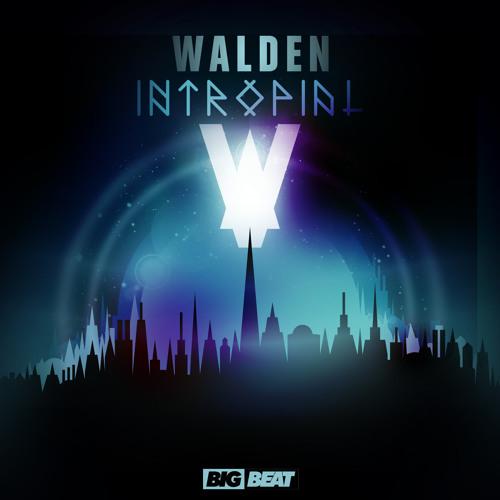 Walden - Intropial (Original Mix)