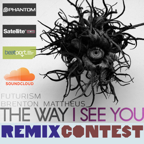 THE WAY I SEE YOU - Remix Contest