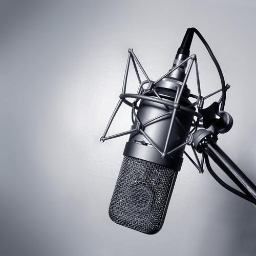 Allegro Media Design (Radio Spot with James Laurinaitis)
