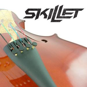 Skillet rebirthing download.