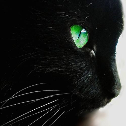 Pisica si mai neagra