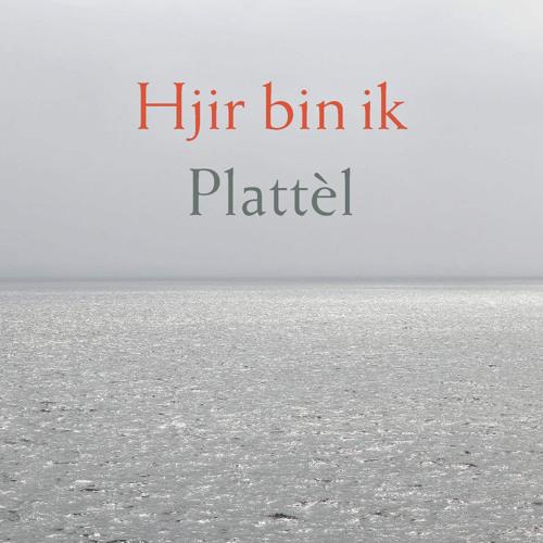 01 - Plattèl - Hjir Bin Ik