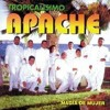 mix tropicalisimo apache-dj rash Portada del disco