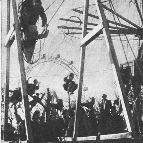 Vienna Electro Swinger