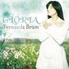 A Visão da Glória - Fernanda Brum