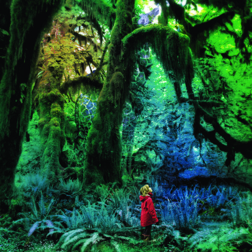 Jacco Gardner - The Ballad Of Little Jane