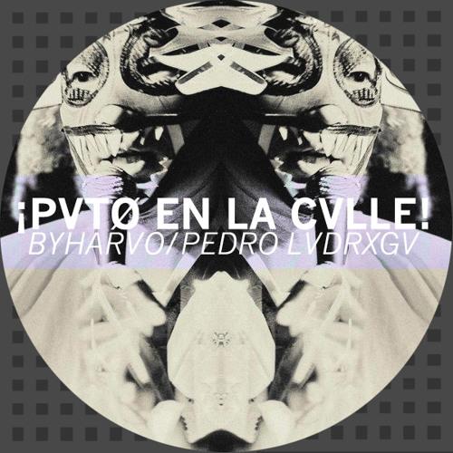 ¡PVTO EN LA CVLLE! ı Pedro LaDroga / By Haruo [+DRG002]