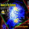 ZШΣΛИ Fχ989  -  Beauty In The Darkness ↓(DownMix) Vol.#3 ☛[READ:INFO]☚ OUT/mid²º¹³ +FAV1