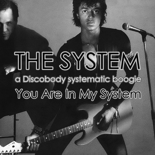 U Are In My System (a Discobody systematic boogie)